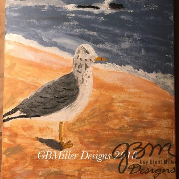 Cape May Gull